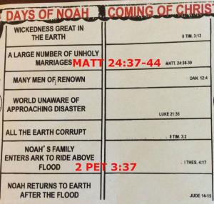 WIDGET BIBLE STUDY